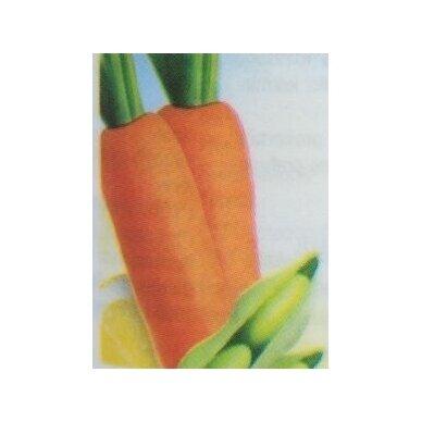 Betaguard, food supplement Neolife