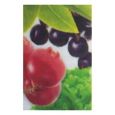 """Flavonoid Complex"", flavonoidų maisto papildas Neolife"