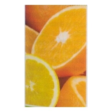 """Sustained Release Vitamin C"", vitamino C maisto papildas Neolife"